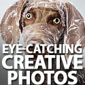 Post thumbnail of 50+ Eye-Catching Creative Photos