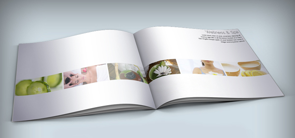 Brochure Designs Creative Inspiring Inspiration Graphic - Spa brochure templates free