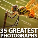 Post Thumbnail of 35 Greatest Photographs of National Geographic