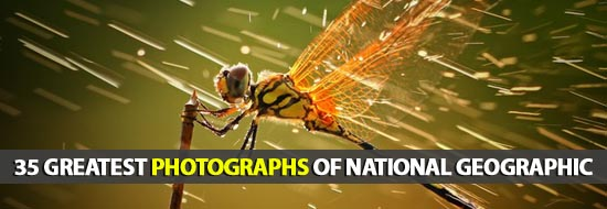 Greatest Photographs of National Geographic - Best Post Of 2012