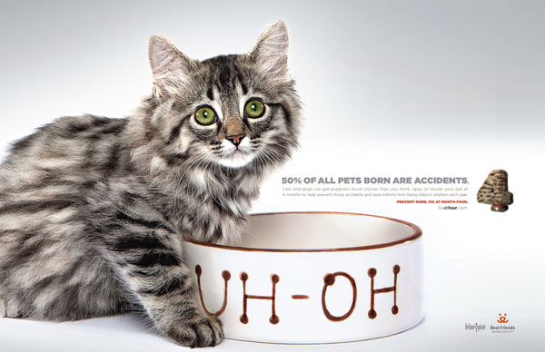42 Humorous Print Media Advertisements
