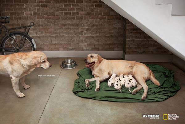 Most popular award winning print advertisements 14