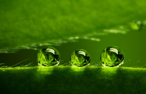 Beautiful Water Drop Photography 15