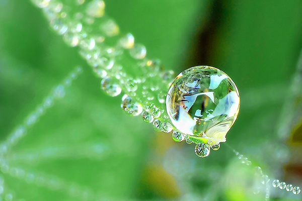 Beautiful Water Drop Photography 28