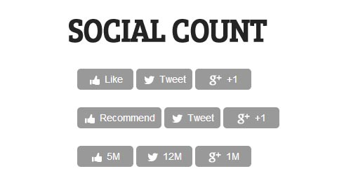 SocialCount: Lighter And Faster Social Networking Widgets jQuery Plugin