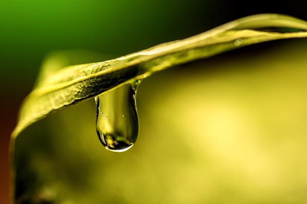 Waterdropphotography23