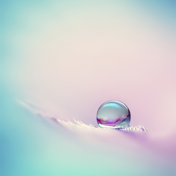 Waterdropphotography29