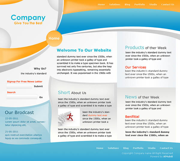 Company Snapshot Template