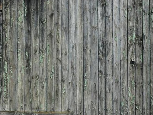 High Qualtity Wood Textures-18