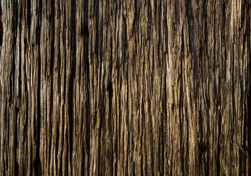High Qualtity Wood Textures-20
