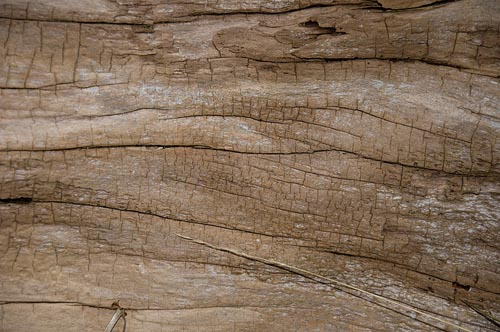 50 Seamless High Quality Wood Textures | Pattern and Texture ...