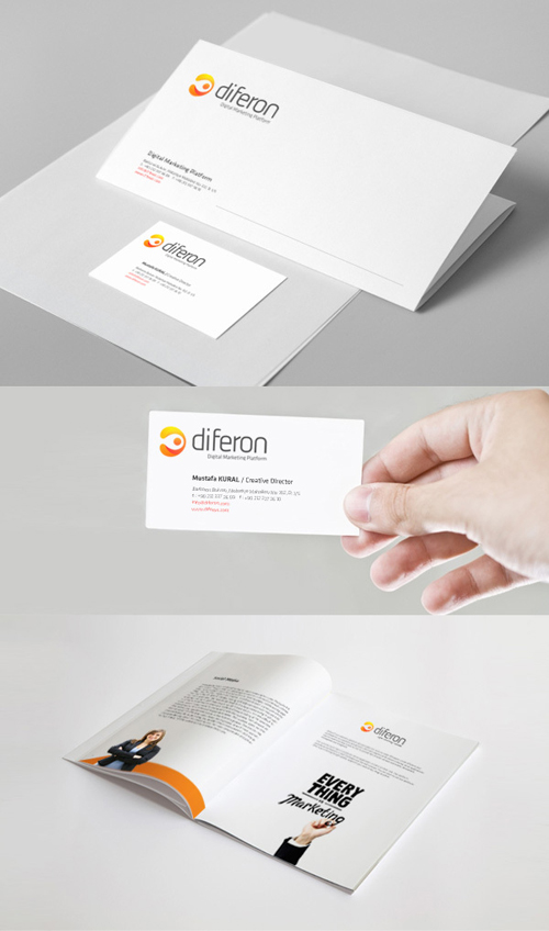 Branding, Visual Identity and Logo Ddesigns 24-1