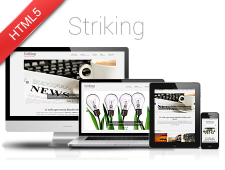 Striking – Clean Style Responsive Website Template