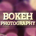 Post Thumbnail of Bokeh Photography - 35 Beautiful Photos