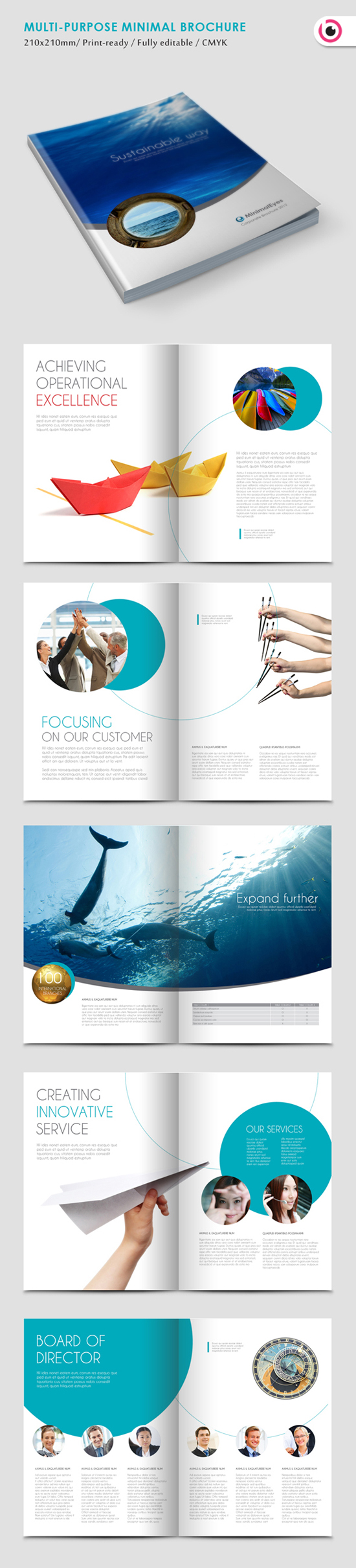 Professional brochure designs design graphic design for Graphic design brochure templates