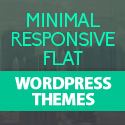 Post Thumbnail of Minimal, Flat and Responsive Design WordPress Themes