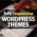 Post Thumbnail of Fully Responsive Design Premium WordPress Themes