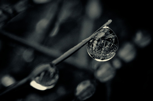 Water Drop Photography - 19