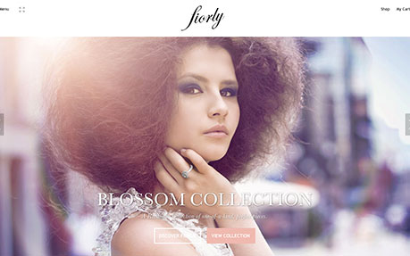 Responsive Website Design Fiorly