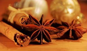 zimtstange und anisstern cinnamon stick and star from anis