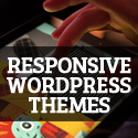 Post Thumbnail of 12 New High Quality Responsive WordPress Themes