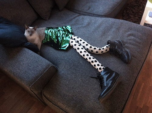 Hilarious cats with noodly legs