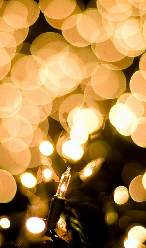 Twinkle Lights Photography-17