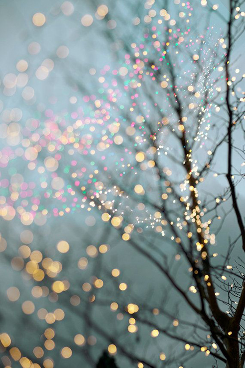 Twinkle Lights Photography-8