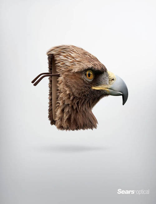 Sears Optical: Eagle