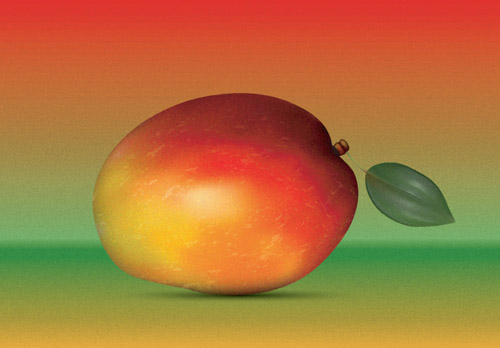 How to create a Realistic Mango in Adobe Illustrator