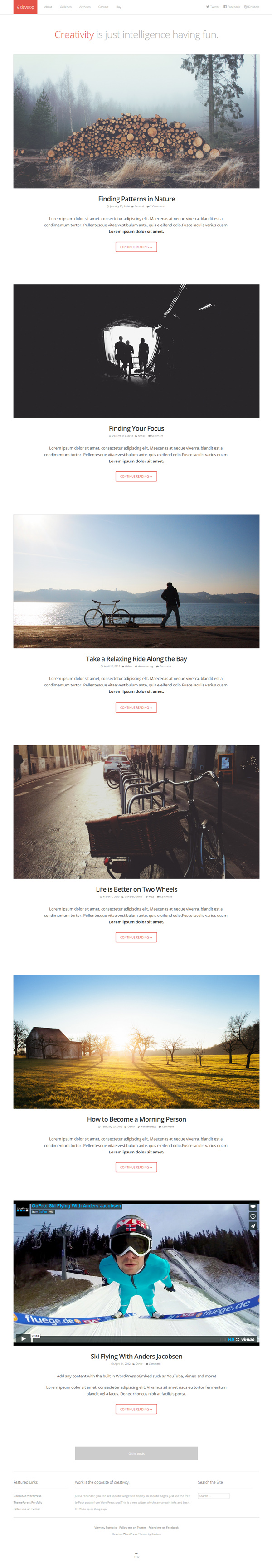 Develop – Responsive WordPress HTML5/CSS3 Theme