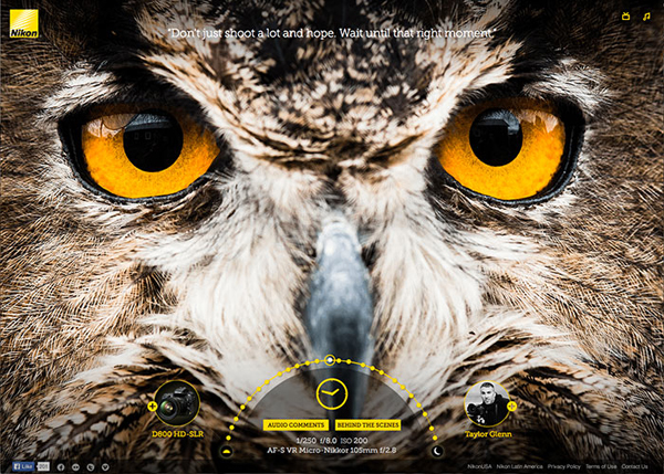 Nikon Image Quality Experience #CSS3 #website #design