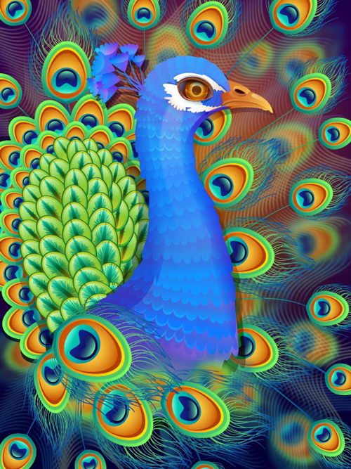 Create a Vibrant Peacock in Adobe Illustrator