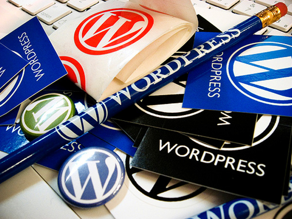 Plugins & Widgets WordPress
