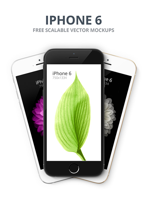 Free iPhone 6 and iPhone 6 Plus Mockup Templates (PSD, AI & Sketch) - Free Download - 27
