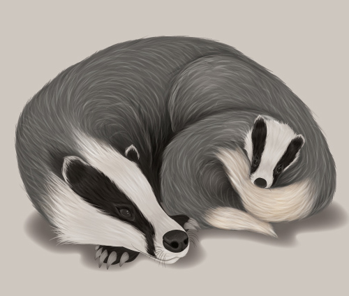 Create a Fur Texture, Family Badger Scene in Adobe Illustrator