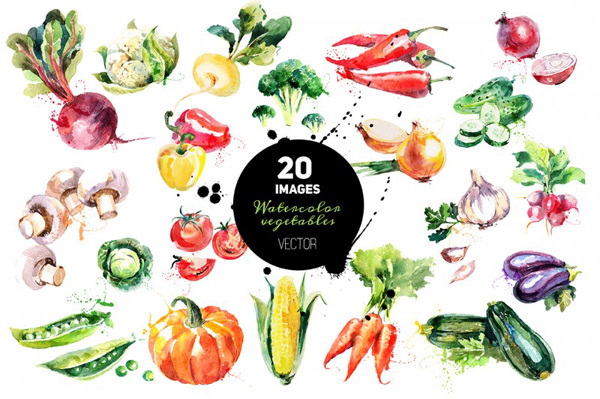 Watercolor Vegetables Vector