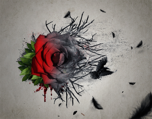 Create an Emotional Abstract Photo Manipulation of a Rose