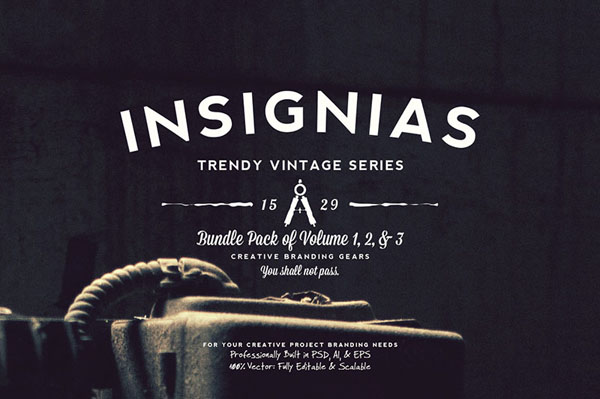 33 Trendy Vintage Insignias Bundle