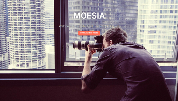 Moesia stunning business theme