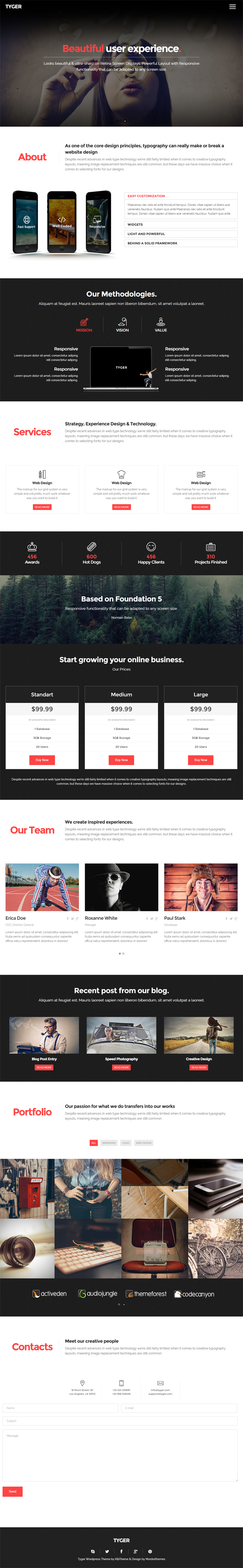 Tyger - Clean Corporate WordPress Theme