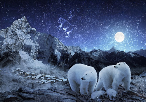 Create a Magical Starry Night of Polar Bears in Photoshop
