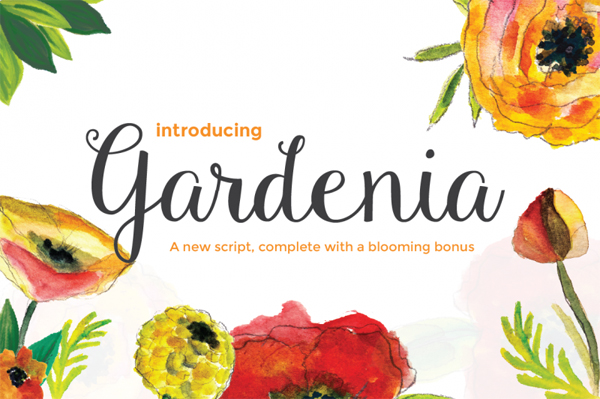 Gardenia Script is a new hand crafted typeface