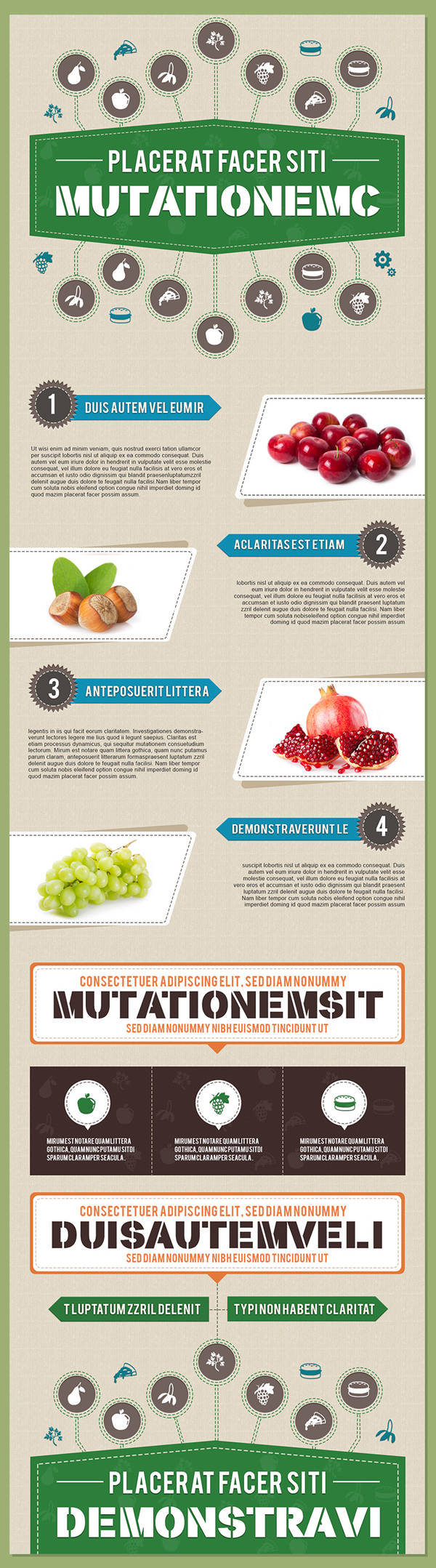 Free Infographics PSD Template in Food and Nutrition Theme – 3 Color Options