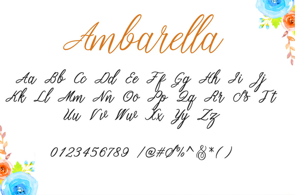 Ambarella Font Letters and Numbers