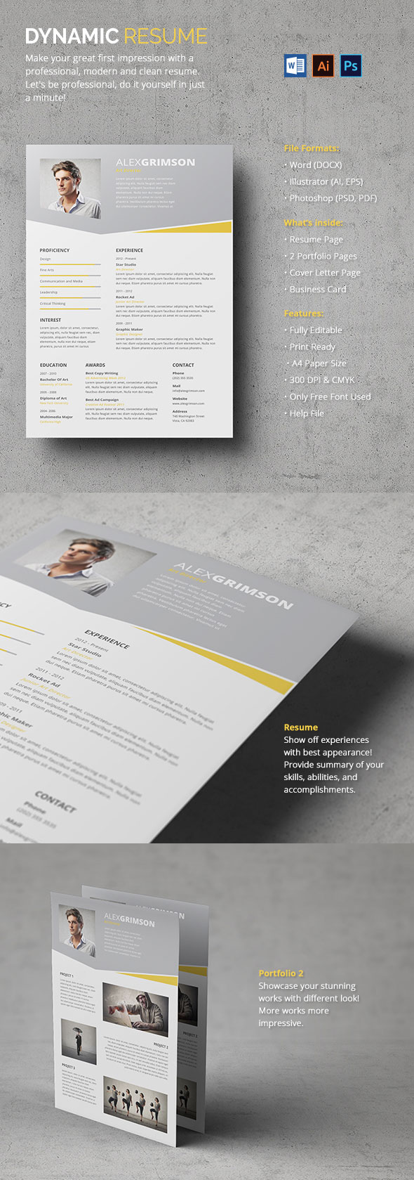 Dynamic Resume - With Portfolio Pages Included