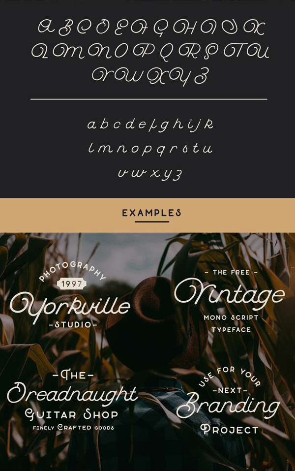 Buffalo Script fonts and letters