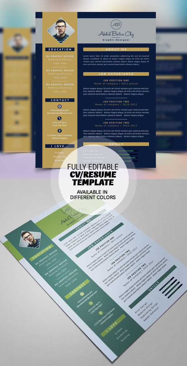 Free Fully Editable Resume Template