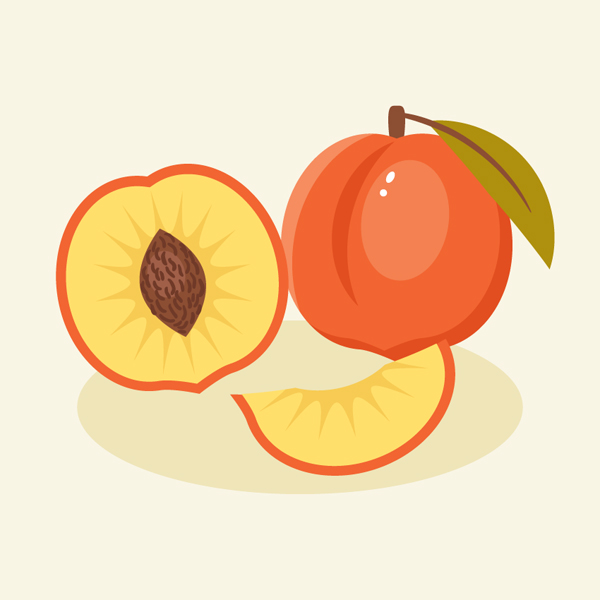 How to Create a Peach Illustration in Adobe Illustrator