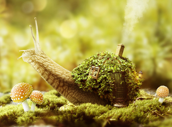 How to Create a Fantasy Snail Photo Manipulation With Adobe Photoshop